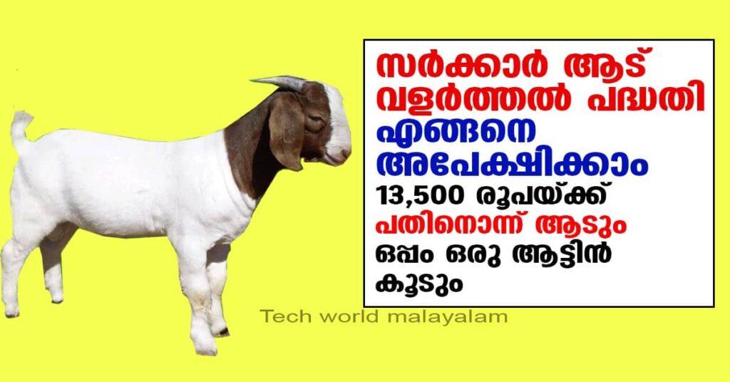 Self Employment Schemes | – Employment Service , Kerala