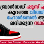 Branded Shoes Low cost