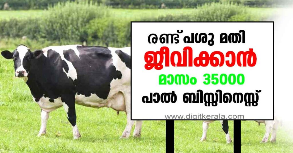 Best way to earn money from doing Cattle farming in Kerala