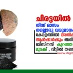 coconut shell business in Kerala