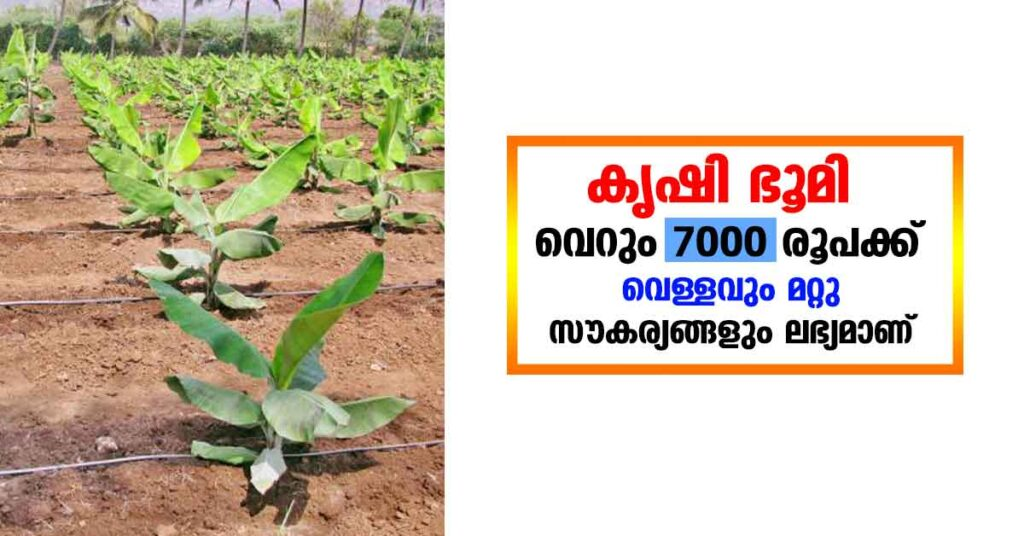 Agricultural land 7000 rupees  per cent