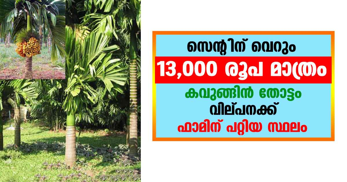 low cost land in kerala for sale