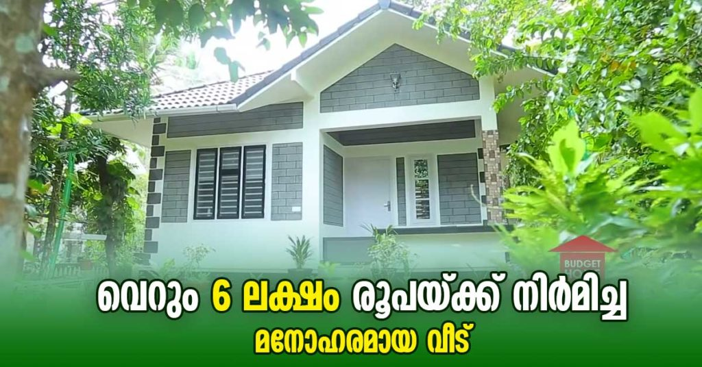 6 Lakh Budget Home in 2.5 cent Land Kerala