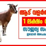 Animal Resources Development scheme in Kerala