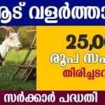 goat satellite unit scheme kerala