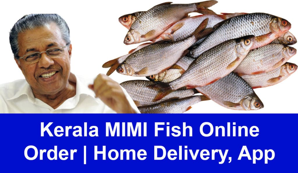 Kerala MIMI Fish Online Order | Home Delivery, App