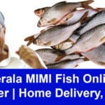 Kerala MIMI Fish Online Order   Home Delivery, App